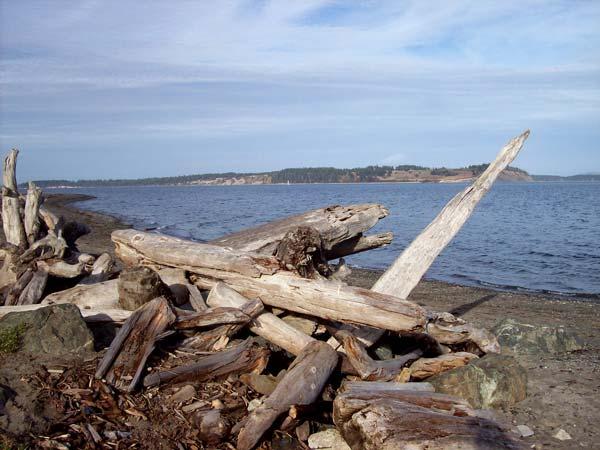 island-view-beach