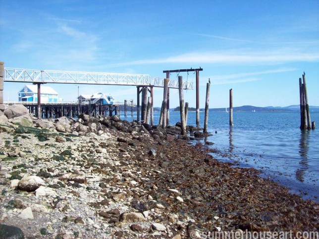 dock-&-seaweed summerhouseart.com