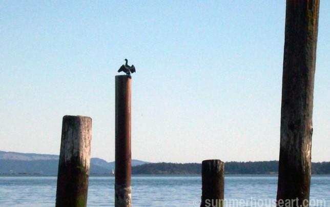 drying-cormorant, summerhouseart.com