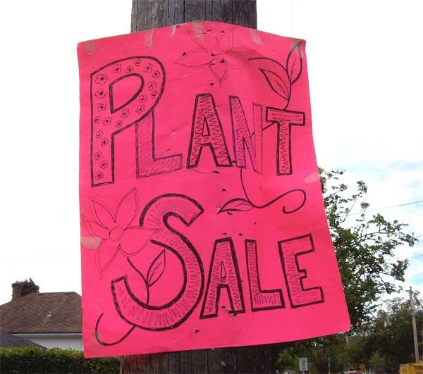 plant-sale-sign1