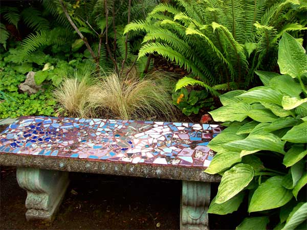 bench-in-ferns