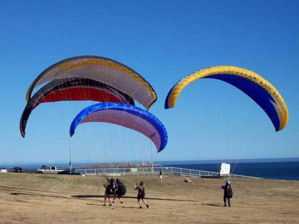 4-gliders