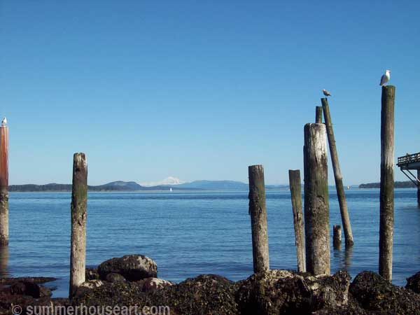 Horizon with Mt Baker, Sidney BC photo summerhouseart.com