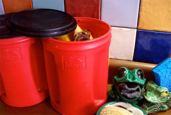 Kitchen Compost saving