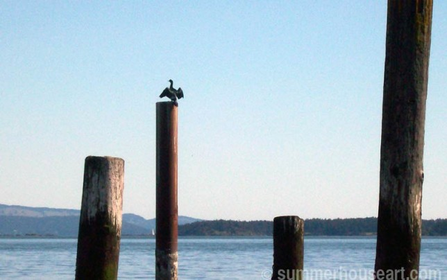 drying-cormorant, summerhouseart.com